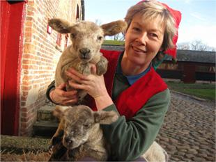 Jayne Chapman, farm manager, with two of the new arrivals, Missy and Frank