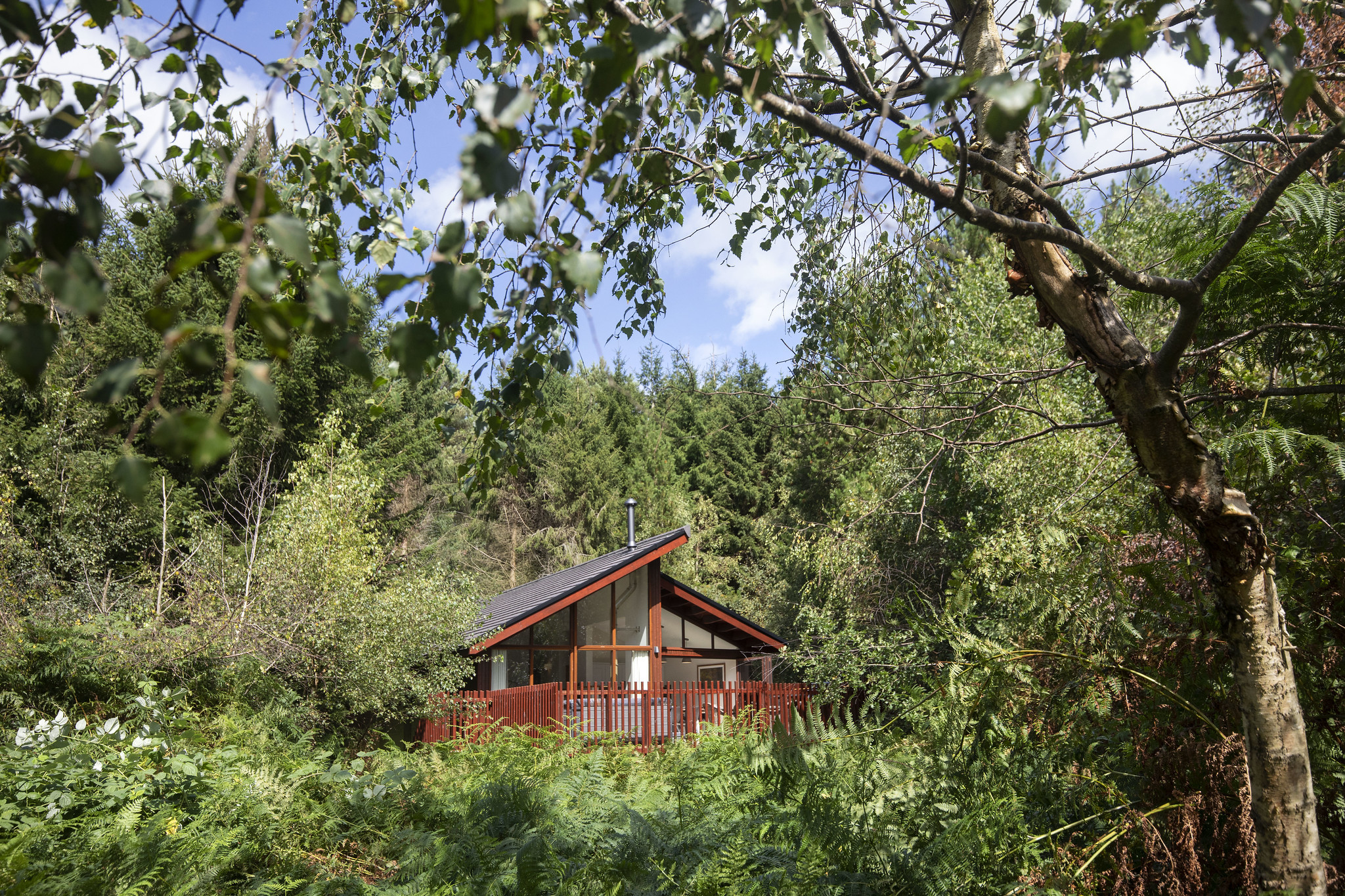 The White Willow Premium Cabin at Delamere Forest by Forest Holidays.