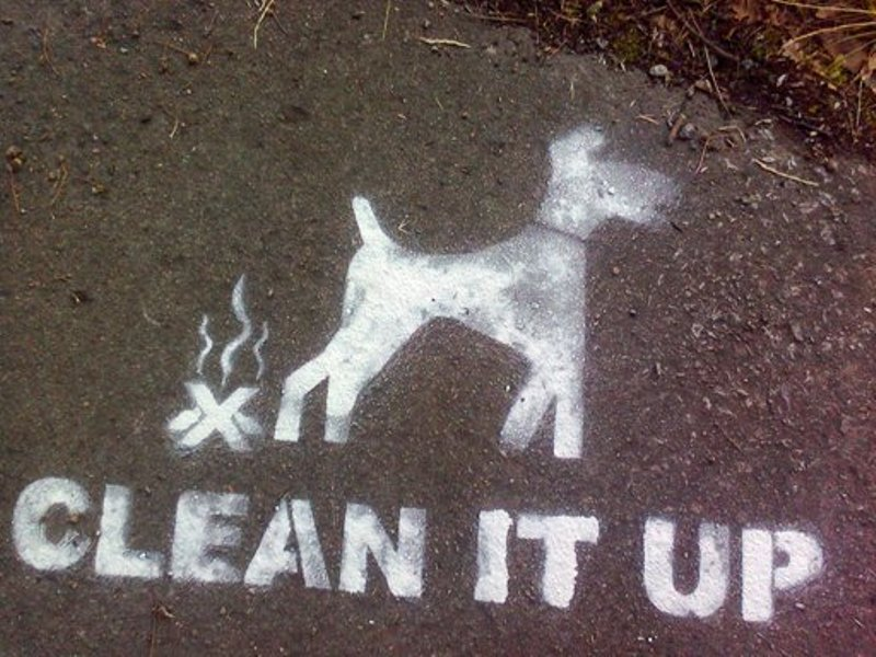 Knutsford parents are urging the council to take more action to clear the town of dog mess