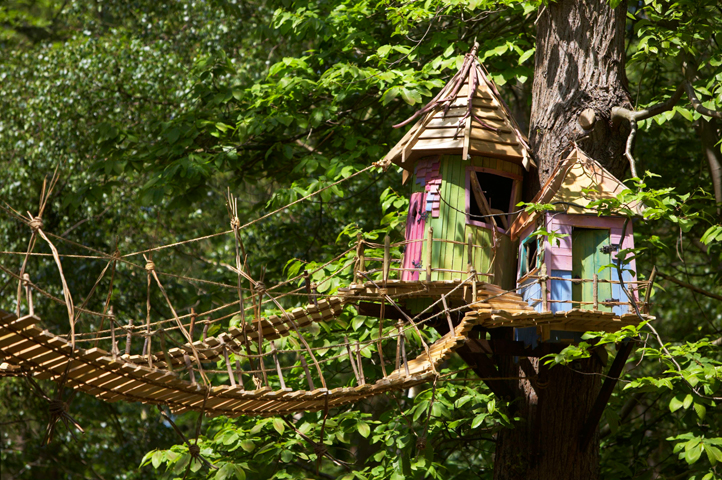 One step closer:  BeWILDerwood wins councillors'  backing