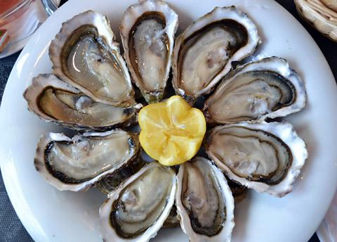 Stock photo of oysters