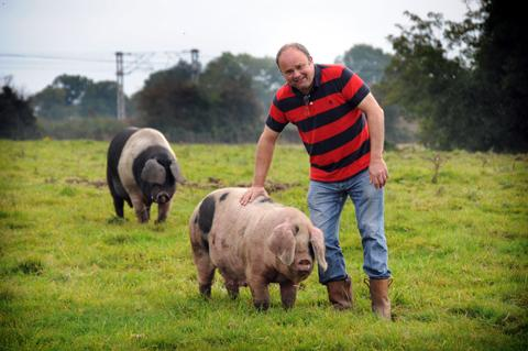 Julian Price with one of his rare breed pigs at Blackden Hall             n124270