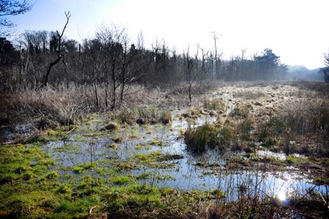 Sanctuary Moor is now flooded to an extent it has never been before, according to one land owner