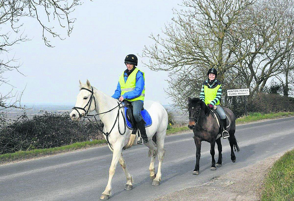 Drivers admit lack of knowledge about how to drive around horses