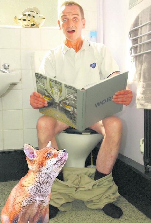 Knutsford Guardian: Anthony Schofield says he was attacked by a fox which burst in on him as he sat on the toilet