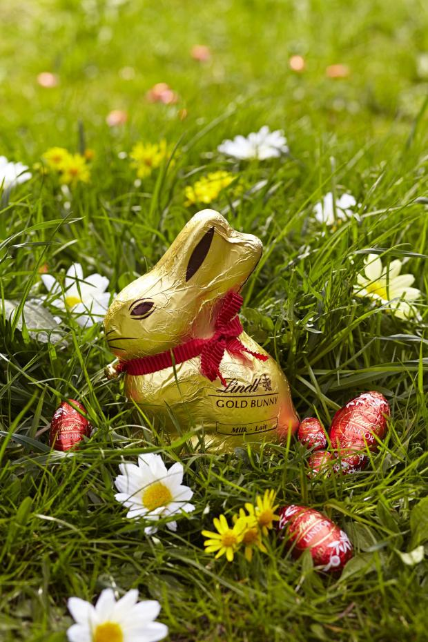 Knutsford Guardian: Lindt hop to Tatton Park for egg-citing Easter weekend
