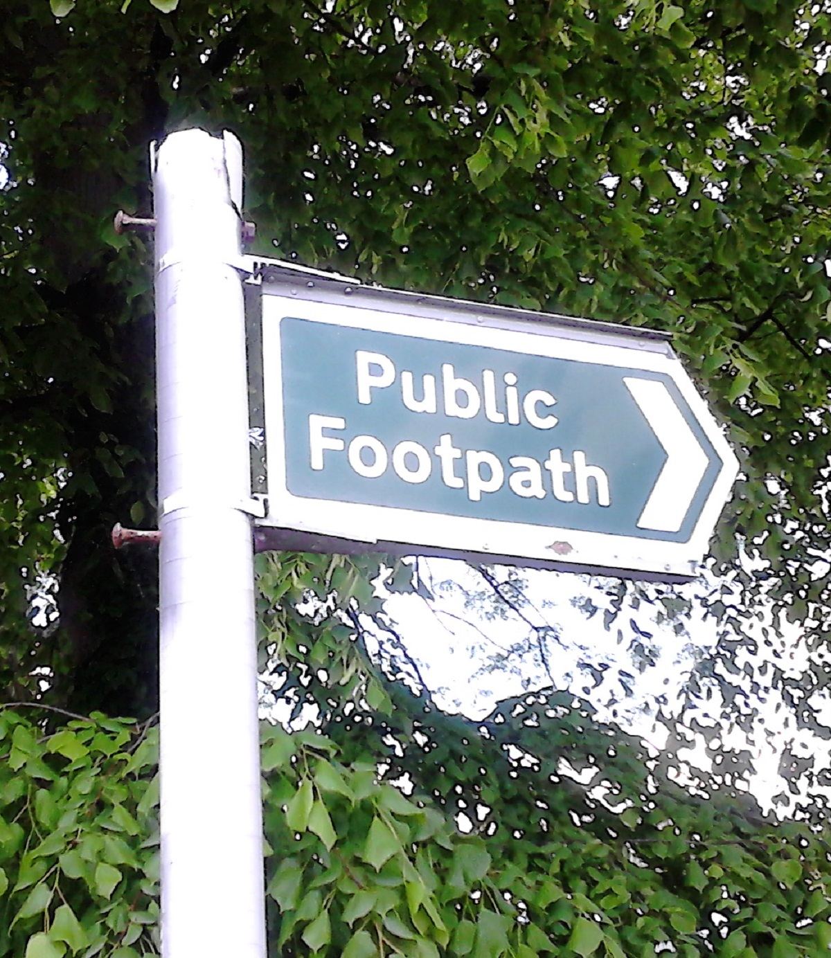 Where are the path signs?
