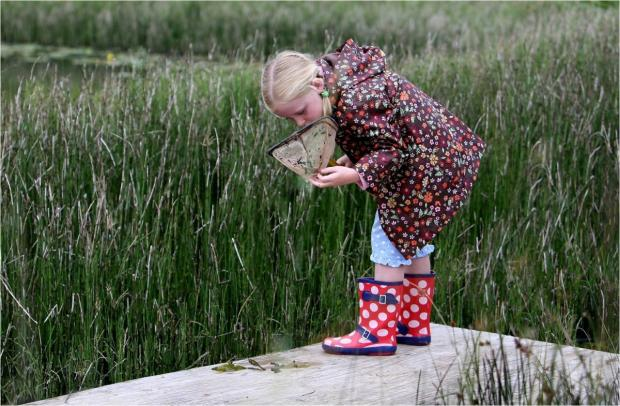 Visitors will have a chance to go pond dipping with Tatton's rangers as part of Cheshire's Amazed by Science Festival 2014