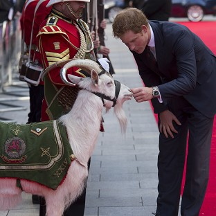 Prince Harry pets Shenkin the goat, the regimental mascot of the 3rd Battalion, as he attends the 50th anniversary screening of Zulu